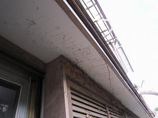 築40年の中古住宅を買ってリノベーション